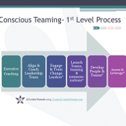 Conscious Teaming For Sustainability