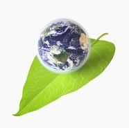 Blue Belt Leadership for sustainability